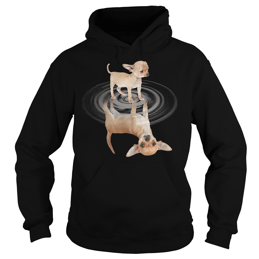 Chihuahua In The Mirror Hoodie