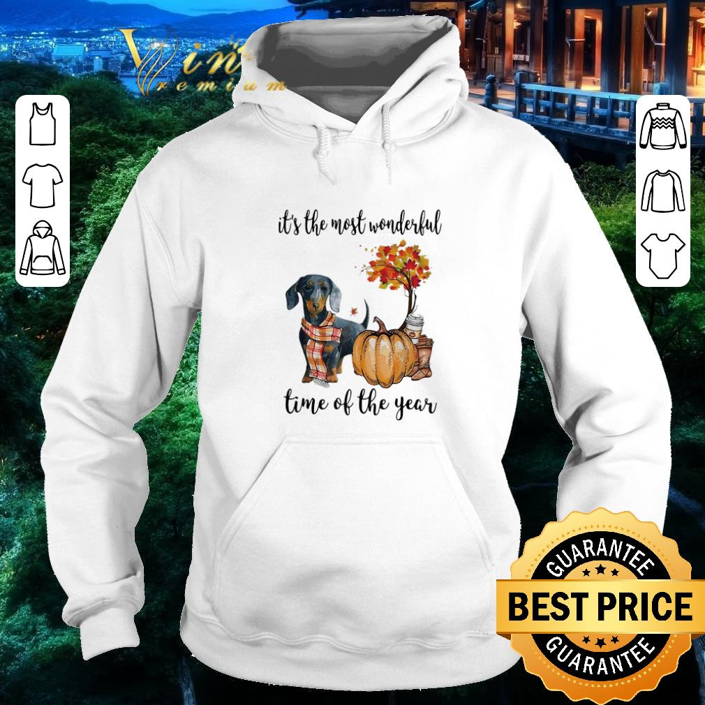 Nice Dachshund it's the most wonderful time of the year shirt