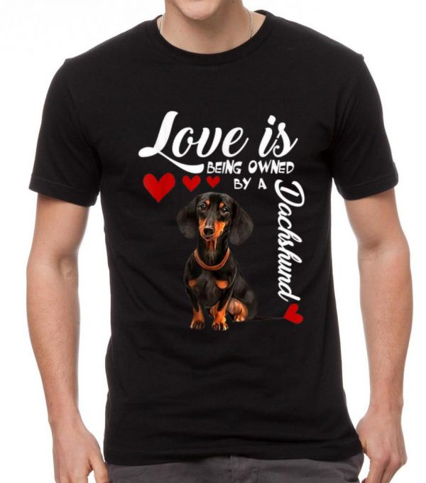 Pretty Love Is Being Owned By A Dachshund Shirt 2 1.jpg