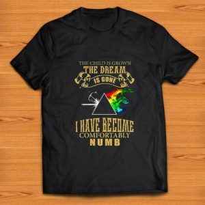 Hot The Child Is Grown The Dream Is Gone I Have Become Comfortably Numb Pink Floyd shirt