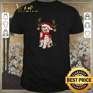 Funny Aussie gorgeous reindeer Christmas shirt