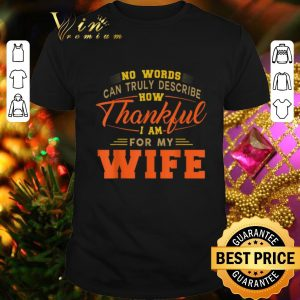 Nice No words can truly describe how Thankful i am for my wife shirt