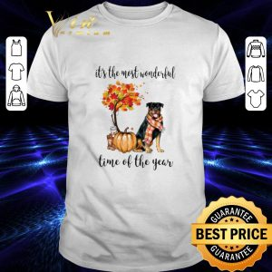 Official Rottweiler & Pumpkin it's the most wonderful time of the year shirt
