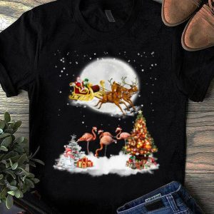 Pretty Flamingo Christmas Santa Riding Reindeer Flamingo Lover Gift shirt