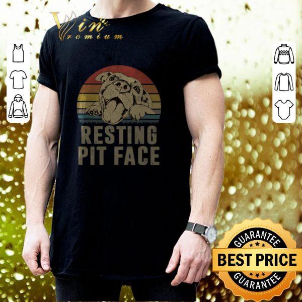 Nice Pitbull resting pit face vintage sunset shirt