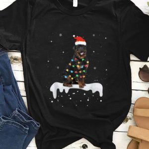 Nice Rottweiler Christmas Lights Cute Dog Lover Gifts sweater