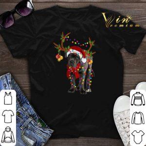 Santa Cane corso gorgeous reindeer Christmas shirt sweater
