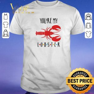 Awesome You're my Lobster Friends shirt sweater