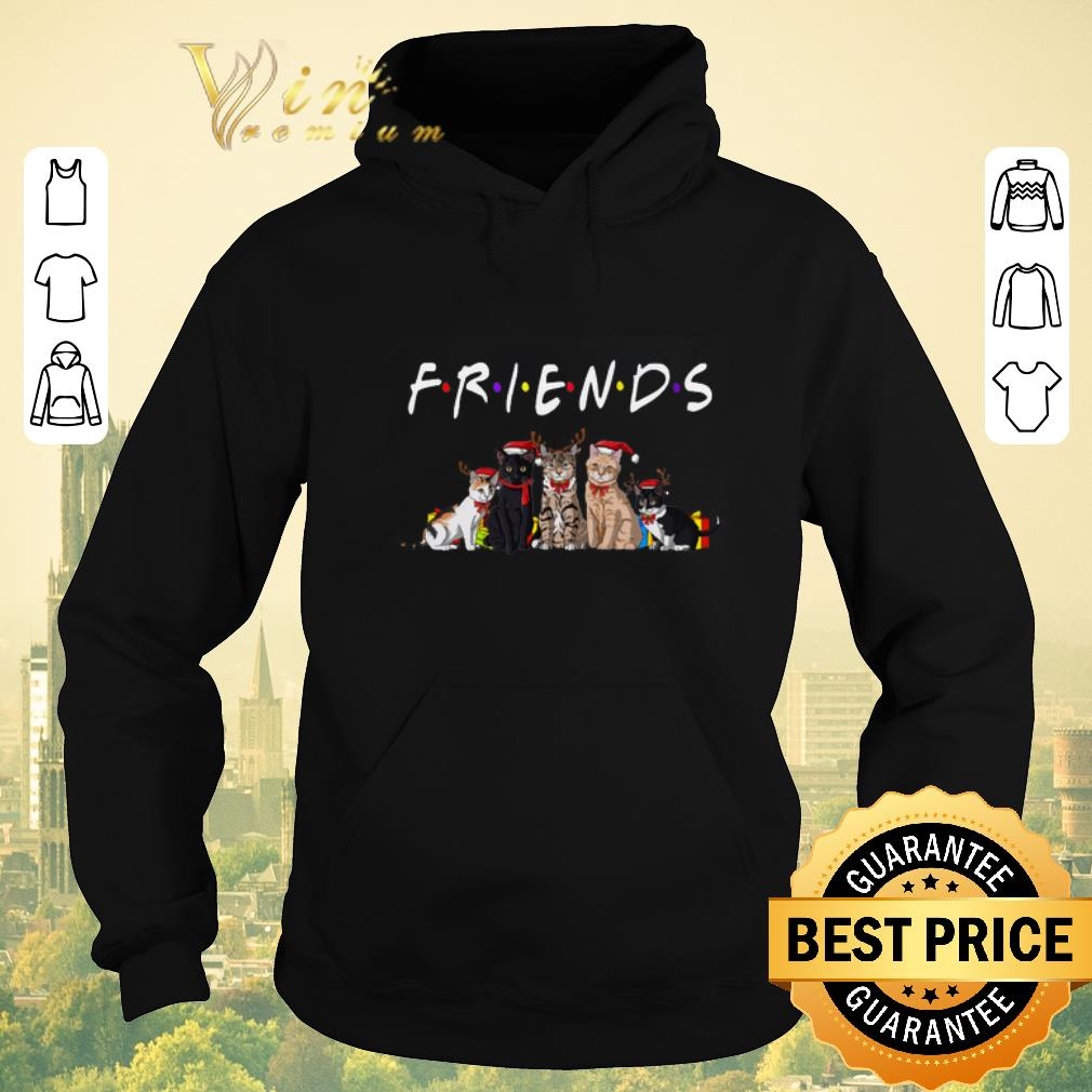 Awesome Christmas Best Friends Cat shirt sweater 4 - Awesome Christmas Best Friends Cat shirt sweater