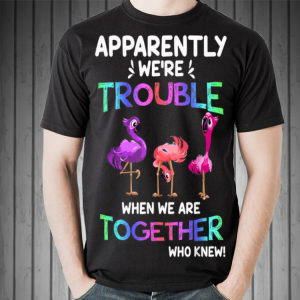 Apparently We're Trouble When We Are Together Parrot Flamingo shirt