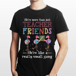We're more than just teacher friends Pink Flamingo shirt