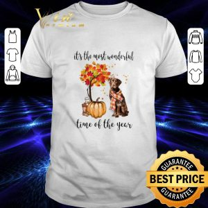 Cheap Pumpkin & Labrador it's the most wonderful time of the year shirt