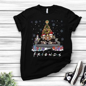 Friends Harry Potter Christmas Tree shirt