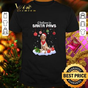 Premium Bracco Italiano i believe in Santa paws Christmas shirt
