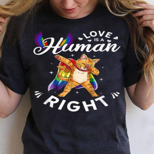 Cat - Love Is A Human Right Gay Pride Support LGBT shirt