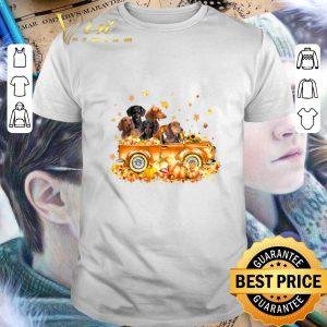 Funny Dachshunds on autumn pumpkin halloween truck shirt