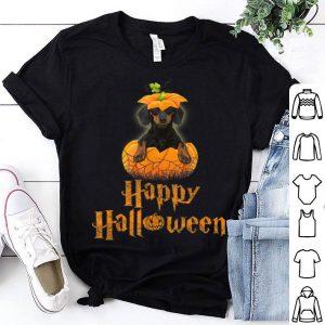 Premium Happy Halloween Funny Dachshund Pumpkin shirt