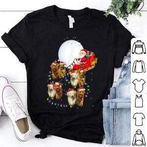 Awesome Goldendoodle Christmas Reindeer Christmas Lights Pajama Gift shirt