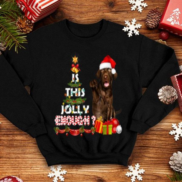 Premium Is This Jolly Enough Xmas Costume Gifts For Labrador Dog Mom shirt
