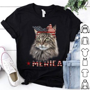 American Flag 4th Of July Maine Coon Cat