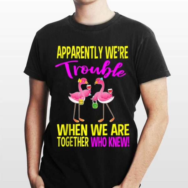 Apparently We Are Trouble When We Are Together Who Knew Flamingo shirt