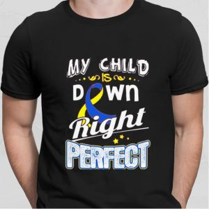 Down Syndrome Awareness My child is down right perfect shirt hoodie
