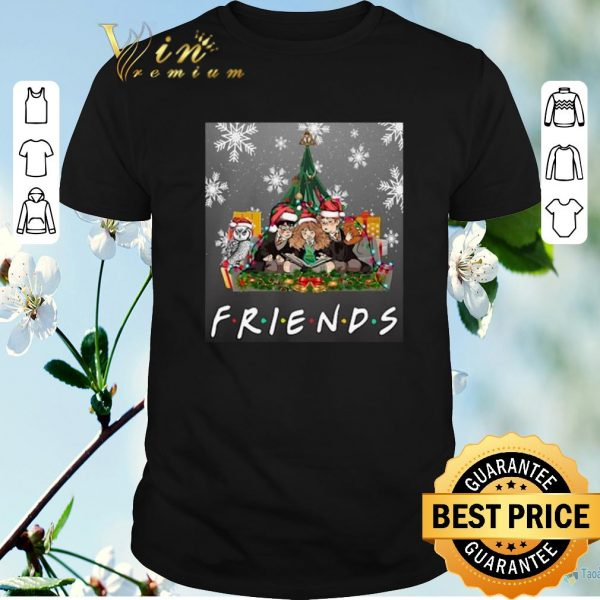 Awesome Harry Potter Friends Hermione Ron Weasley Owl Christmas shirt sweater