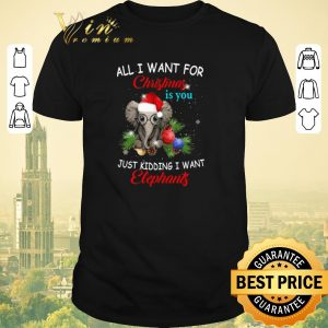 Pretty All i want for Christmas is you just kidding i want elephants shirt sweater