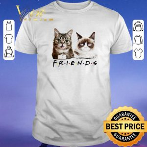 Premium Lil Bub Friends Cats Grumpy shirt sweater