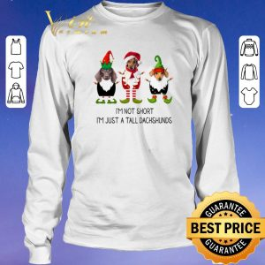 Pretty Christmas Elf i'm not short i'm just a tall dachshunds shirt 2