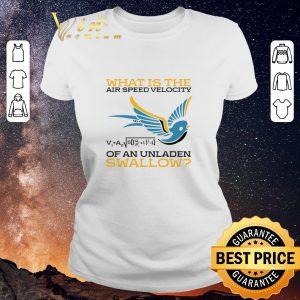Original What is the air speed velocity of an unladen swallow math shirt sweater