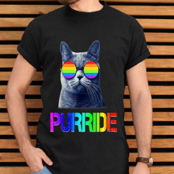 Gay Prides LGBT Cat Gift Purride Colorful Cat Shirt