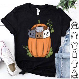 Beautiful Thanksgiving Cat Cat Mom Tee Pumpkin Pie Cute Kitten shirt