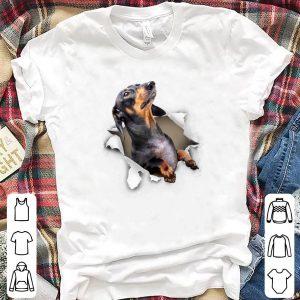 Dog hang in pocket shirt