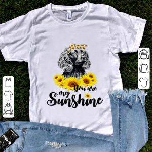 Nice Boykin Spaniel You Are My Sunshine Sunflower shirt