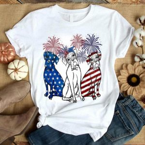 Fireworks Boxer 4th of July independence day American flag shirt