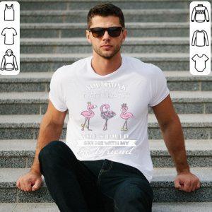Flamingo you think i am crazy best friend shirt