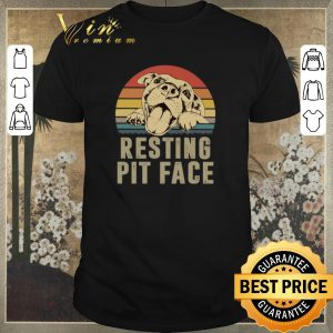 Hot Sunset Pitbull resting pit face vintage shirt