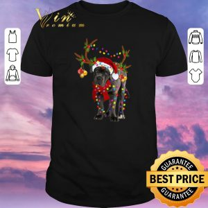Pretty Santa Cane corso gorgeous reindeer Christmas shirt sweater
