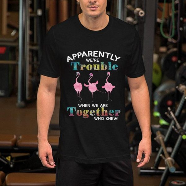 Flamingos apparently we're trouble when we are together who knew shirt