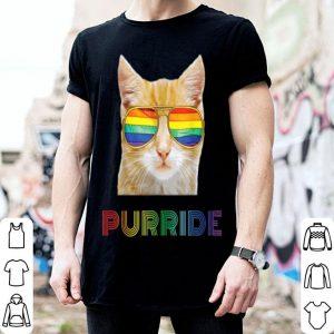 Gay Pride Lgbt Cat Purride shirt