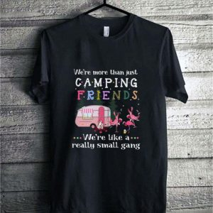 We're more than just camping friends Flamingos shirt sweater