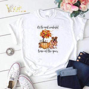 Pumpkin & Bulldog it's the most wonderful time of the year shirt sweater