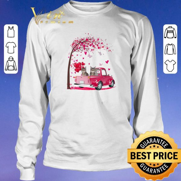 Hot Cats Pink Truck Valentine's Day autumn leaf.png sweater