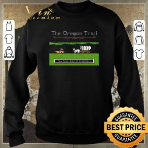 Original You Have Died Of Dysentery The Oregon Trail shirt sweater 2