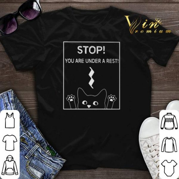 Stop you are under a rest funny symbol music notes musician shirt sweater