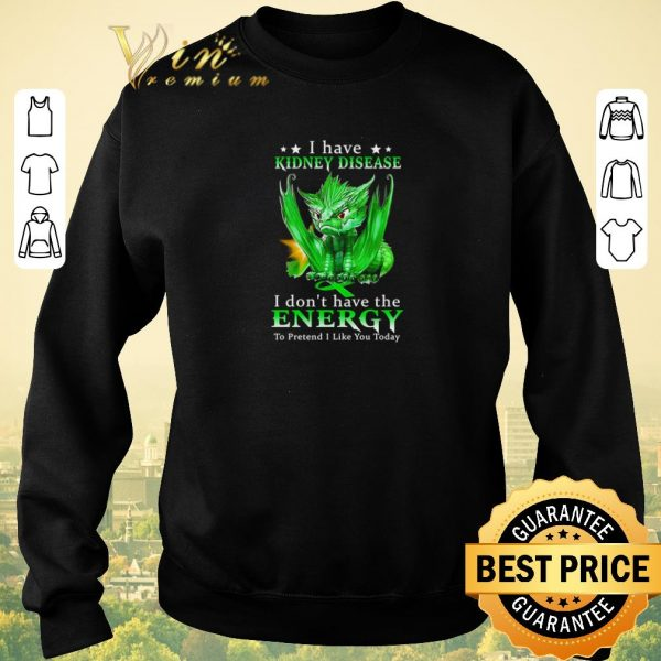Hot Dragon I have Kidney disease I don't have the energy to pretend shirt sweater