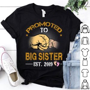 Promoted To Big Sister Est 2019 New Dad Fathers Day shirt