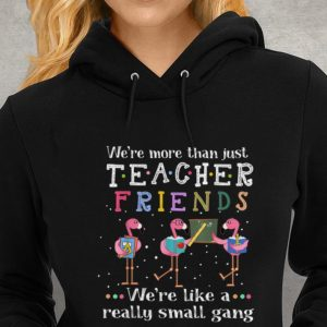 We're More than Just Teacher Friends We're Like A Really Small Gang Flamingo Youth tee