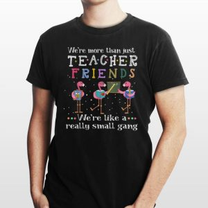We're More than Just Teacher Friends We're Like A Really Small Gang Flamingo shirt
